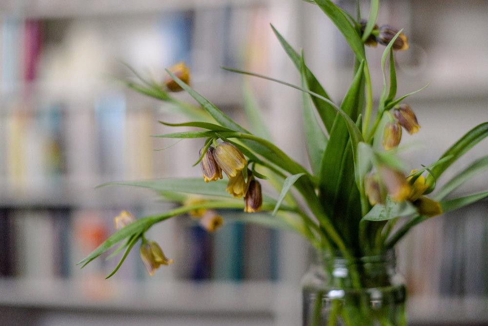 3-spring flowers-31.jpg