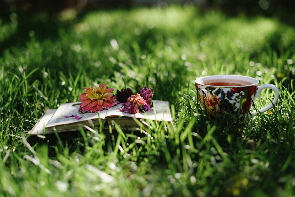 tea book and flowers in the grass
