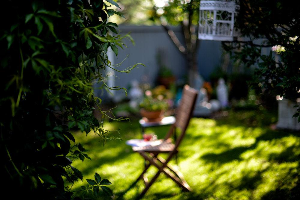 Shawna's backyard