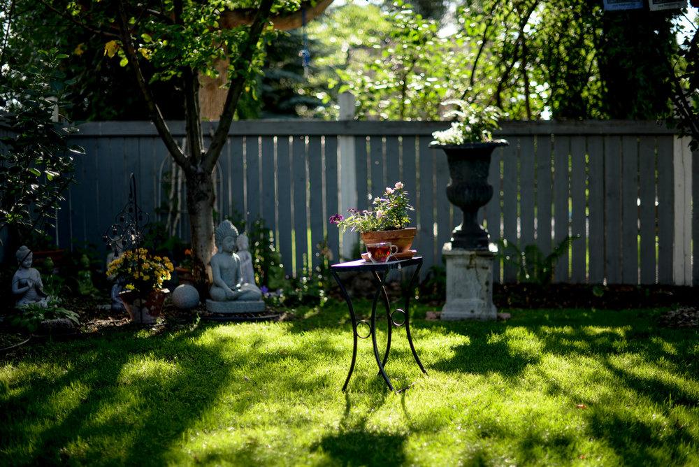 Shawna Lemay's backyard