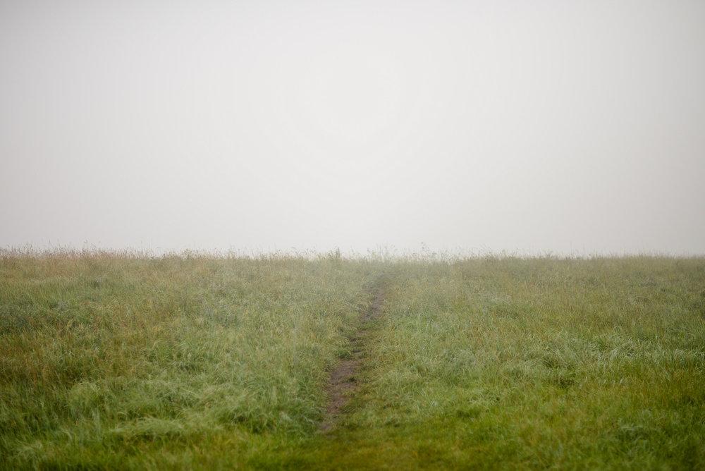 fog path hill