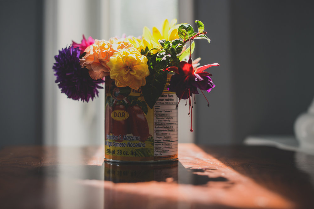 flowers in a tomato tin