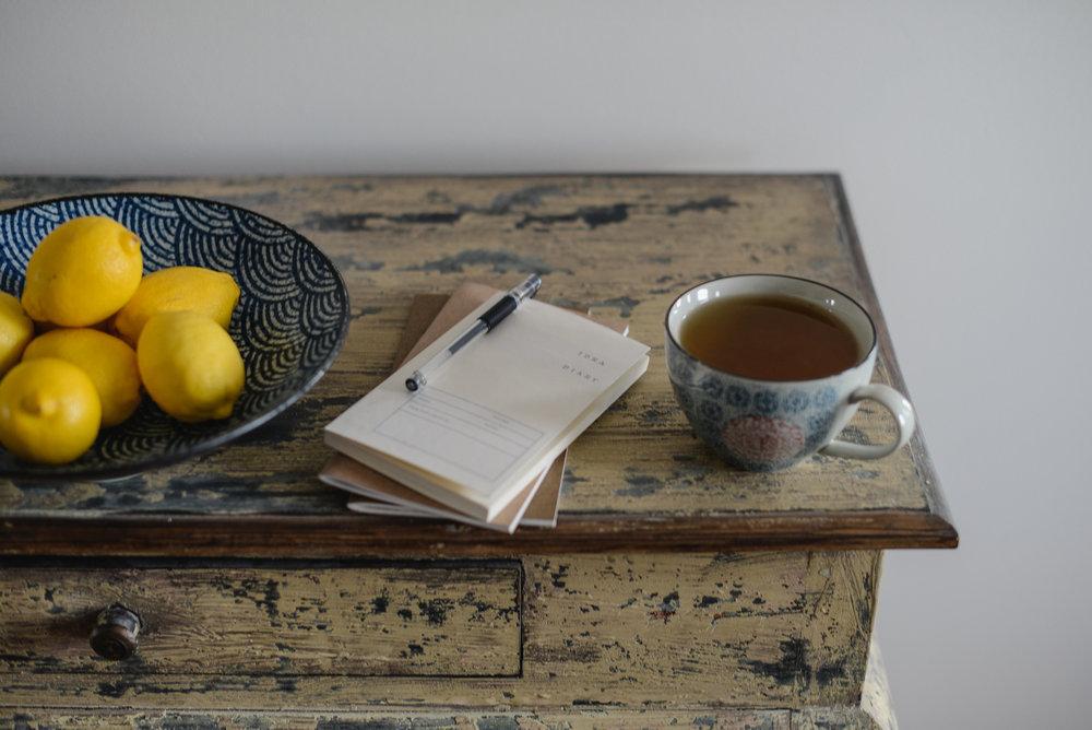 lemons and journal