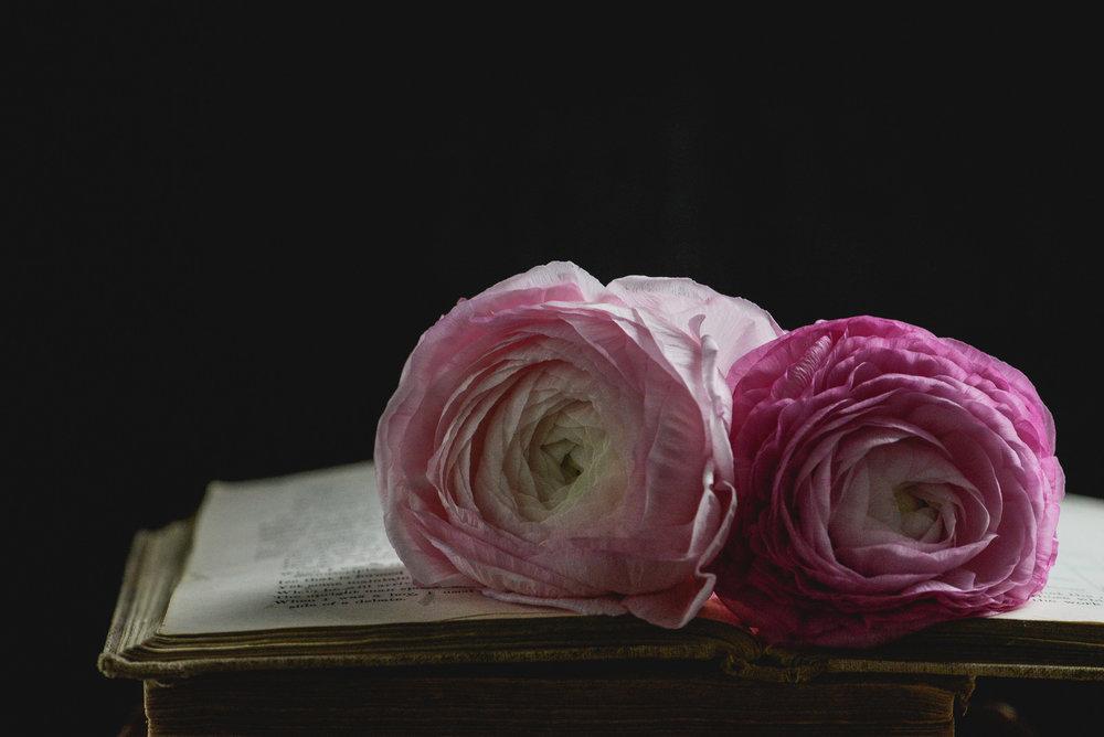 book and pink ranunculus