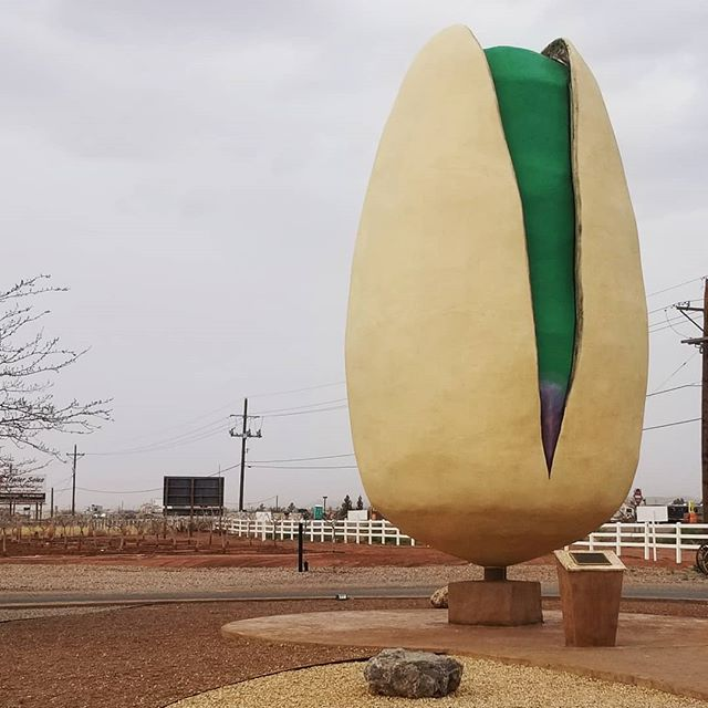 This place was nuts. . . . . #pistachio #pistachioland #roadsideattraction #newmexico