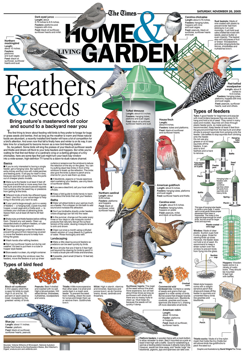 bird feeding graphic SMALL.jpg