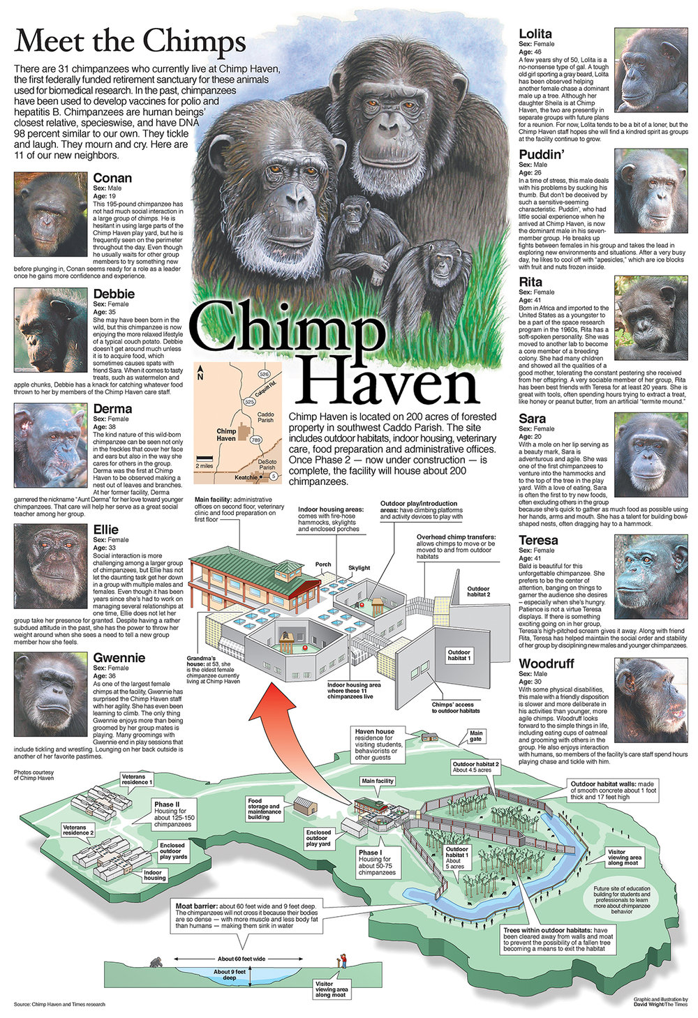 Chimp haven graphic SMALL.jpg