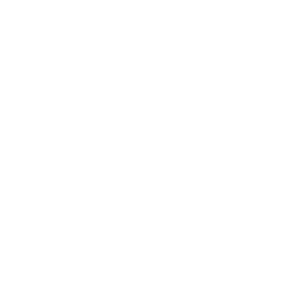 STATIC MASKS