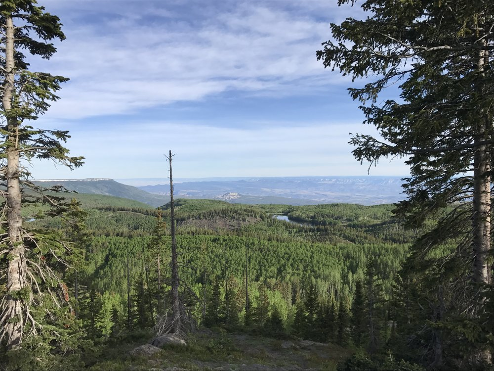 View from Grand Mesa looking north.