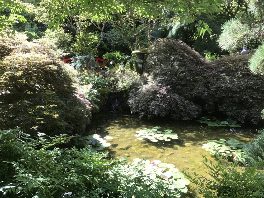 Part of the section dedicated to Japanese style gardens.