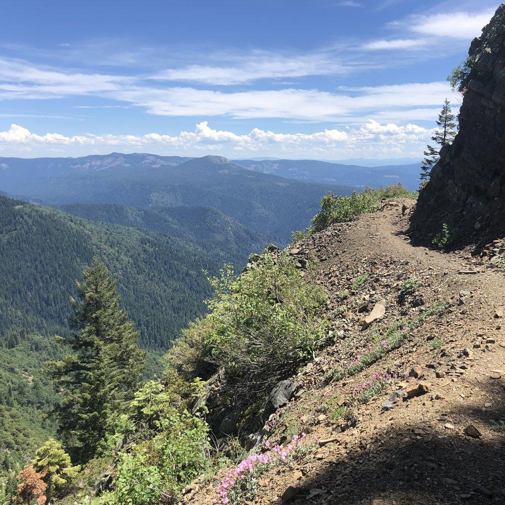 Narrow steep trail
