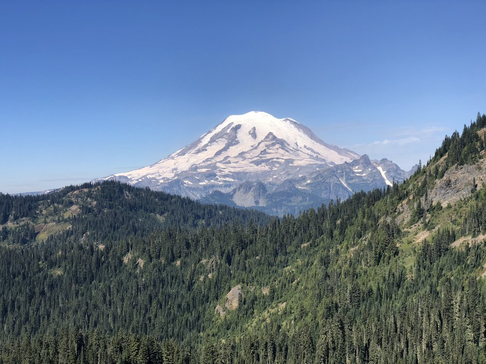 Mount Rainier in all of her glory.