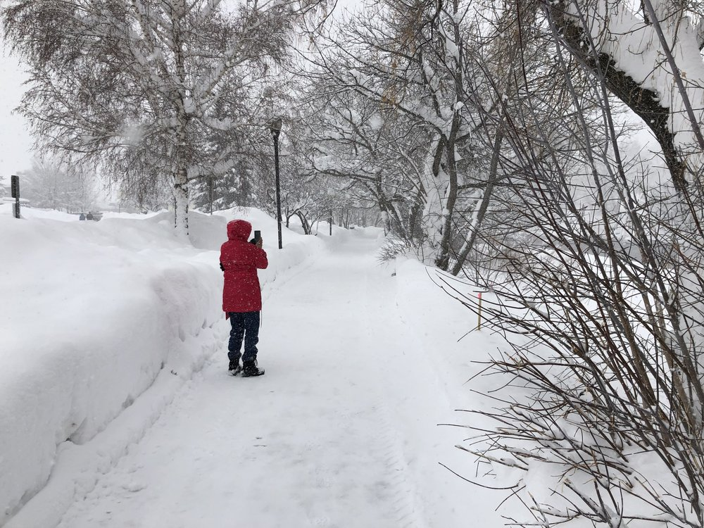 Animas River Trail in the middle of February.