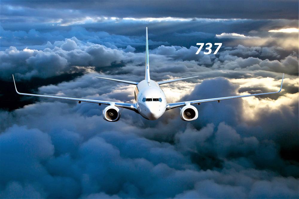 737 web.jpg