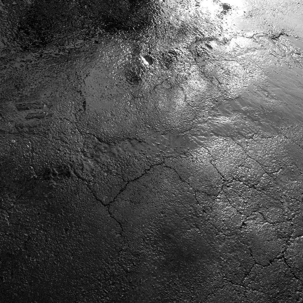 IMG_6384-gray.jpg