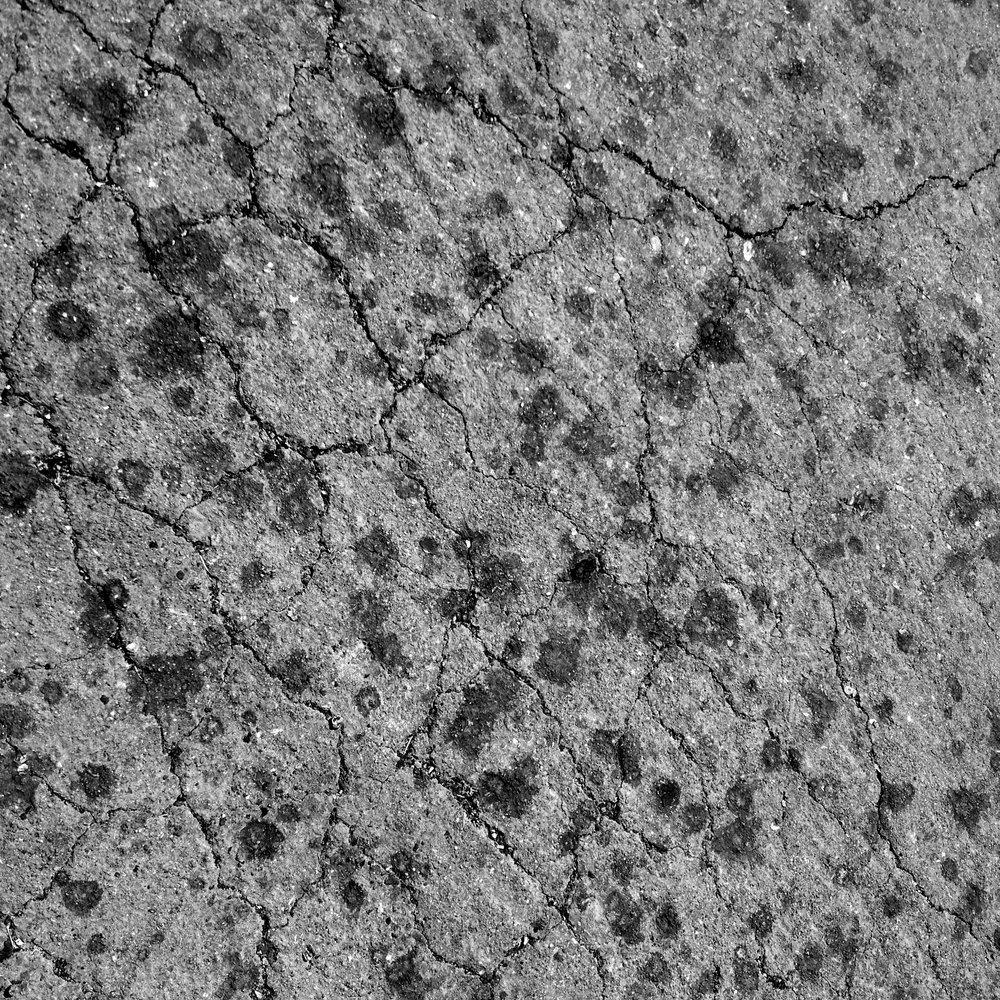 IMG_7249-gray.jpg