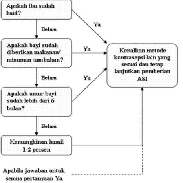 Langkah metode amenorea laktasi