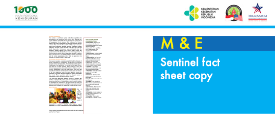sentinel-fact-sheet--copy.png