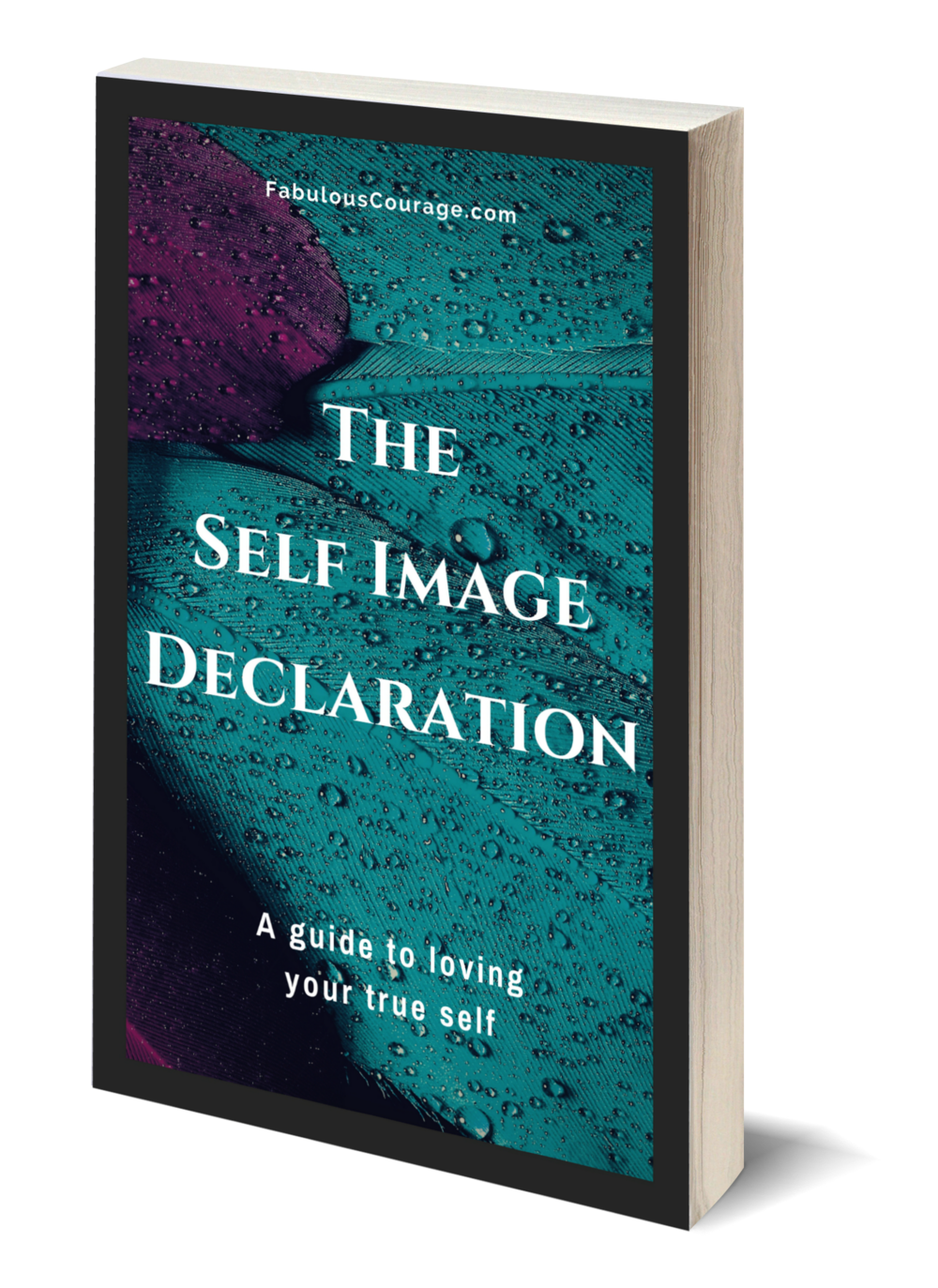 The Self Image Declaration