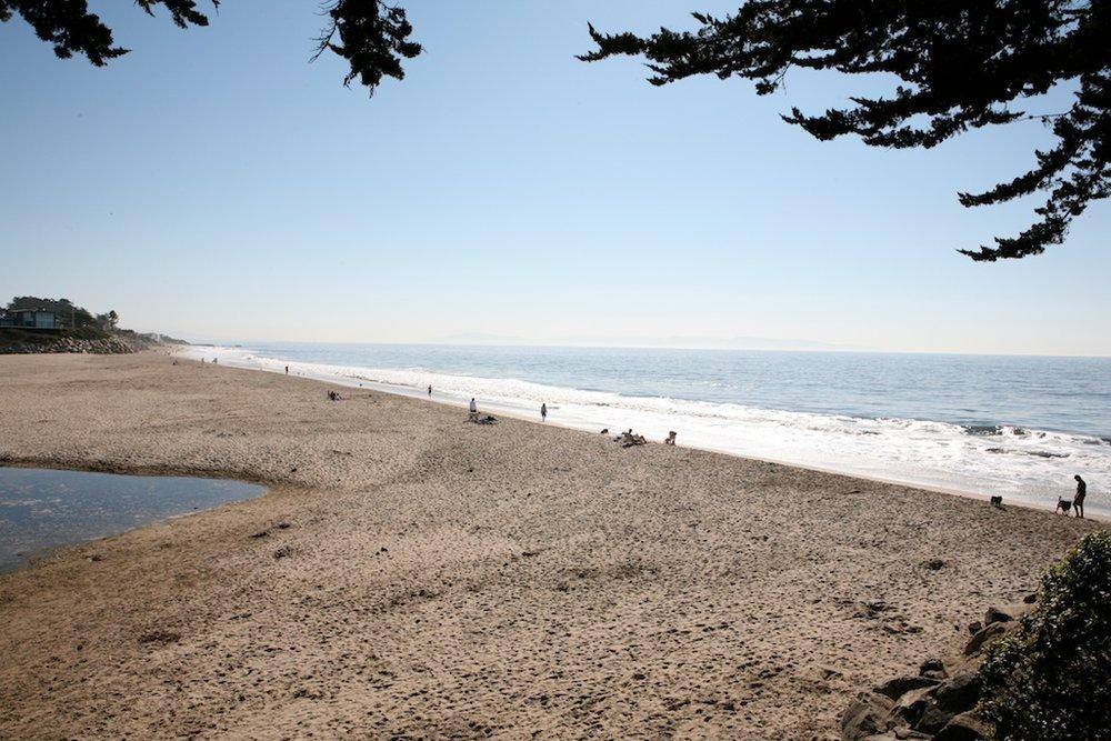 Local Beach