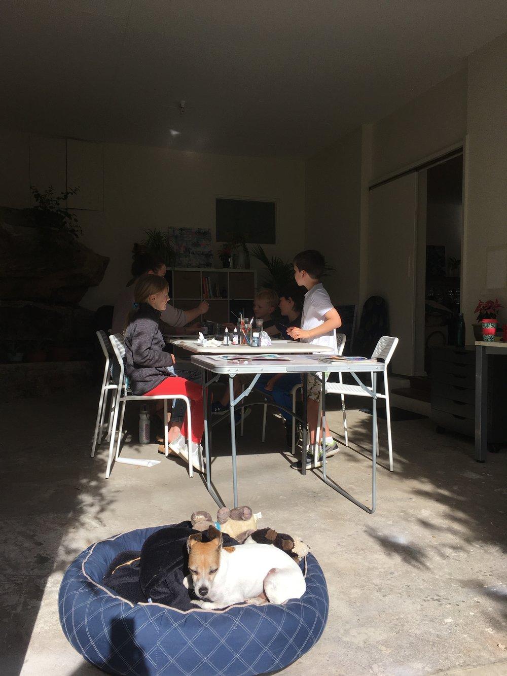 Studio doggy enjoying the sunshine