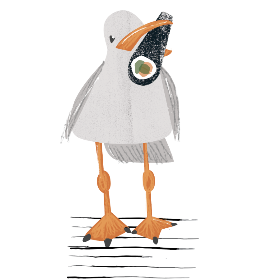 Seagull, digital illustration