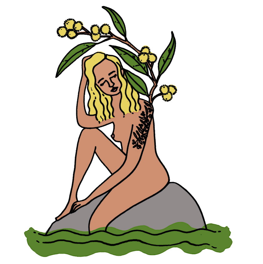 Australian-native-flowers-woman-illustration