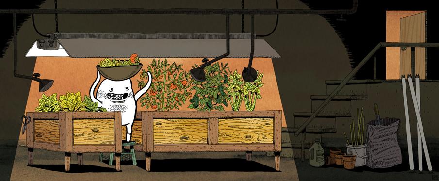 Saladhead  (2013) Drew Morrison
