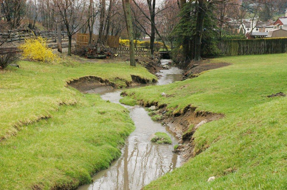Streambank Erosion.JPG