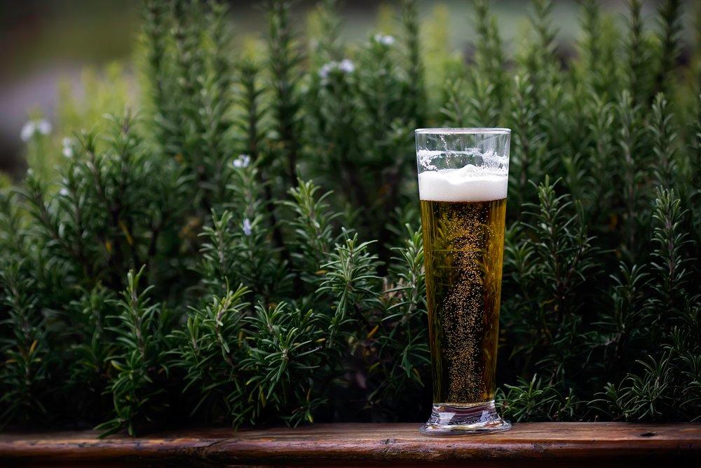 beer 3.jpg