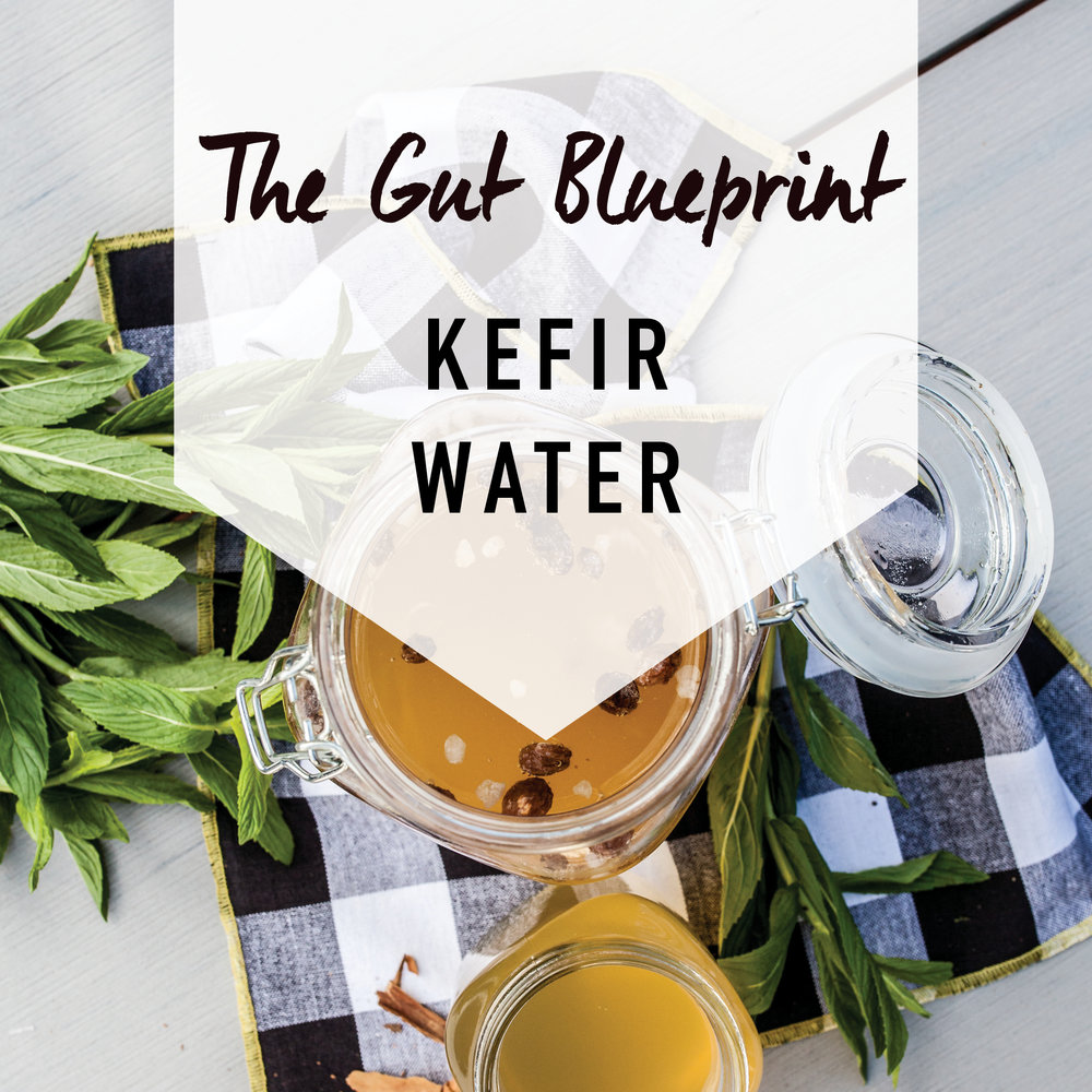 Kefir Water recipe image.jpg