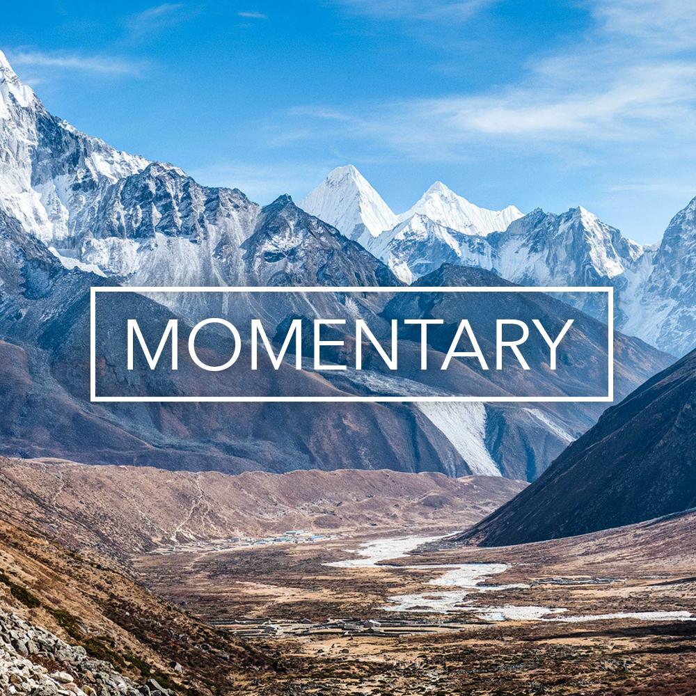 Spotify_Momentary.jpg