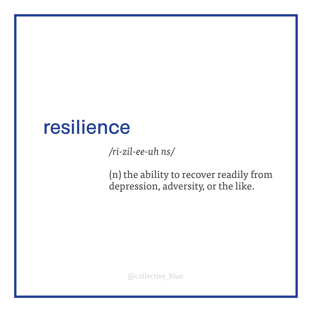 resilience_definition 2.PNG