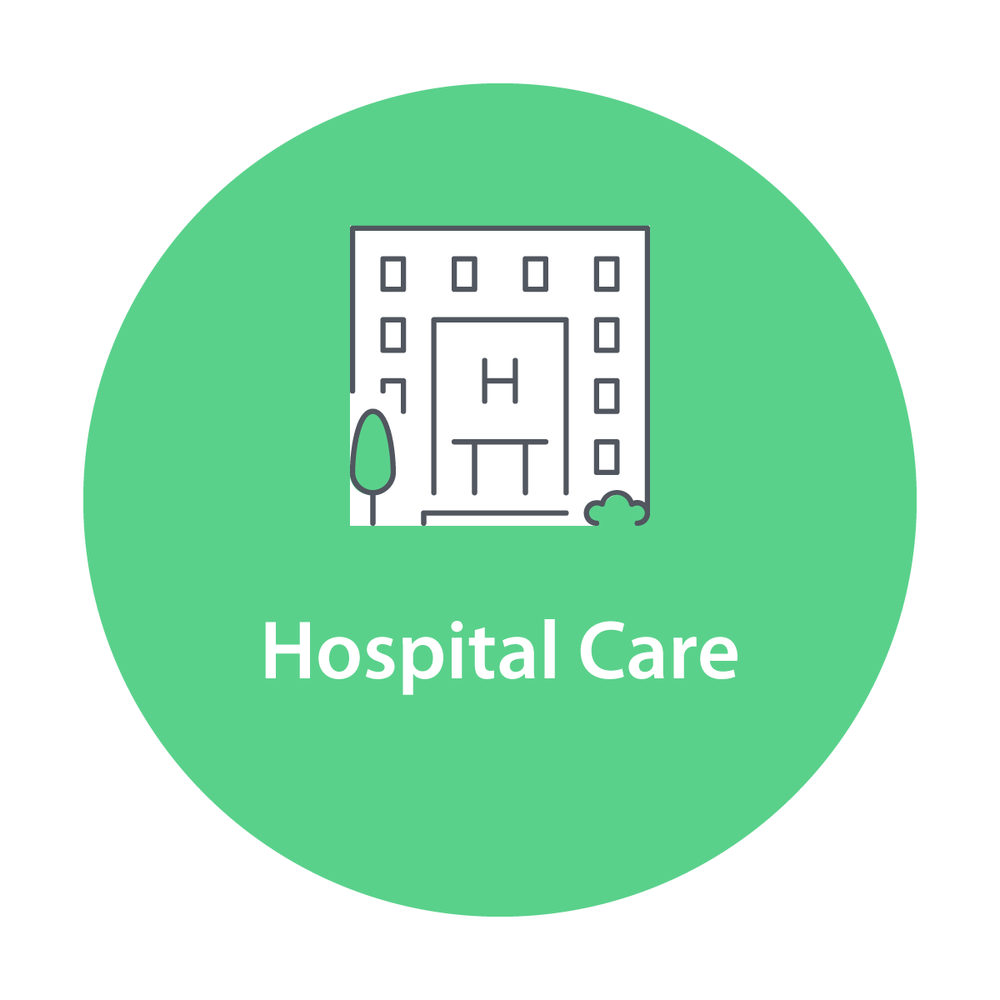 Hospital-Care.png