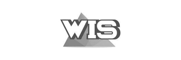 WIS-Holdings.jpg