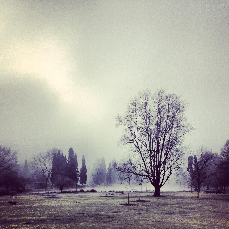 Beautiful parks...