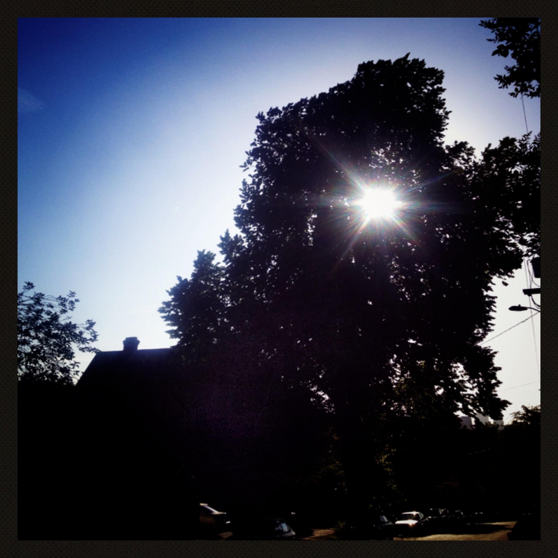 Fabulous filters for sun-gazing.