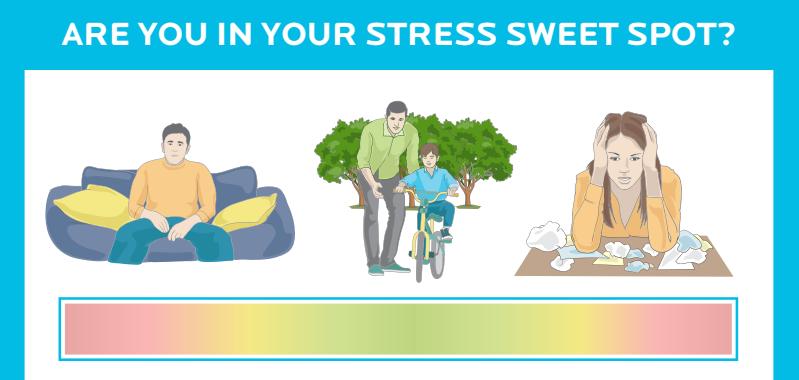 stress sweet spot