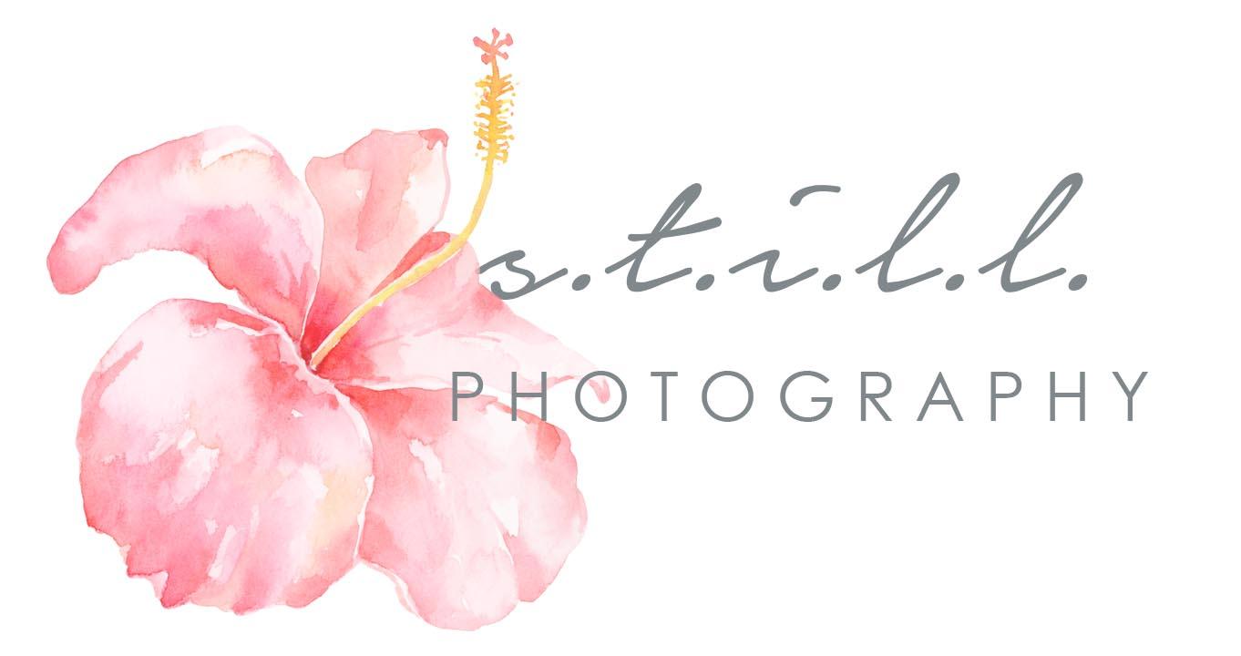 187fc6bb B L O G — S.T.I.L.L. Photography