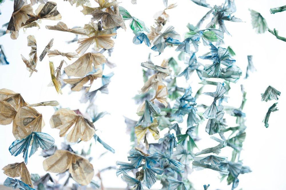 1000 butterflies02.jpg