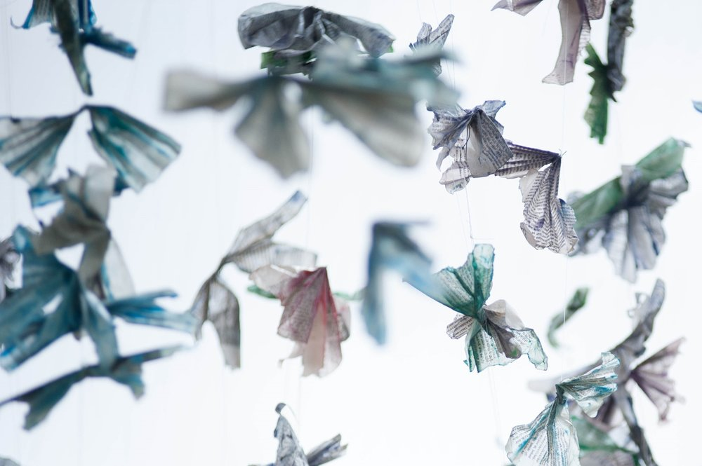 1000 butterflies03.jpg