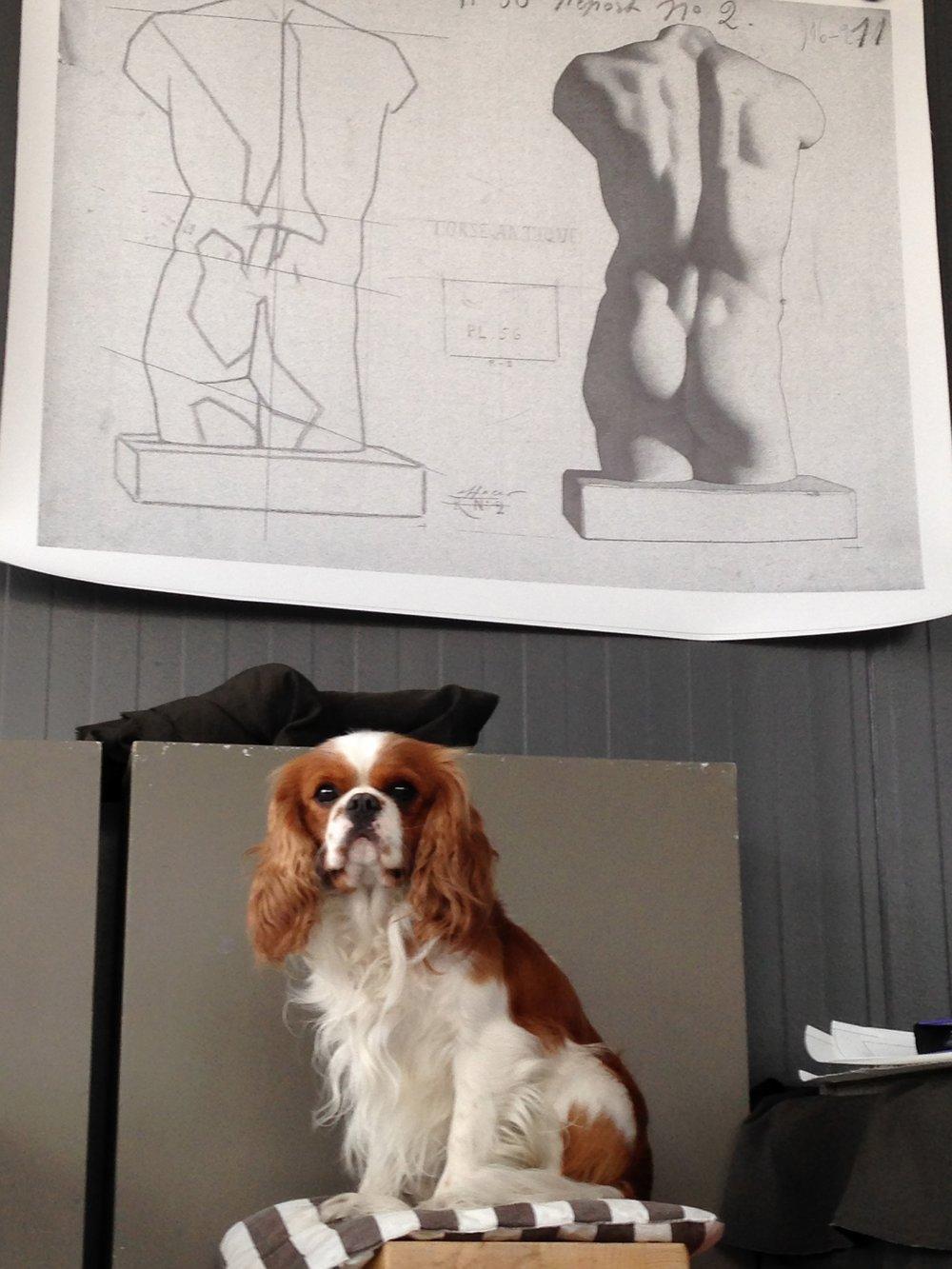 Icare est la fidèle mascotte de l'atelier.