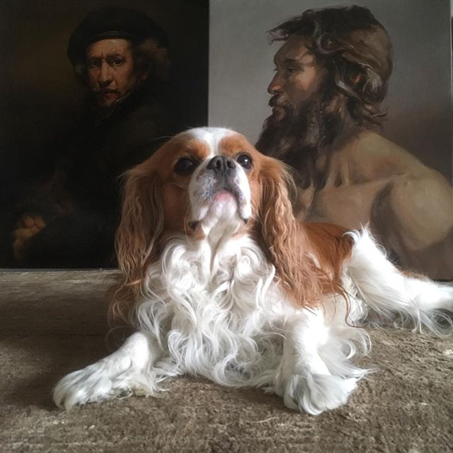 Icarus top model 😍 #drawing #painter #paintings #oilpainting #rembrandt #beardstyle #beardmodel #fromlife #figurativeart #cavalierkingcharles