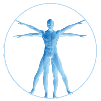 Applied-Kinesiology.png