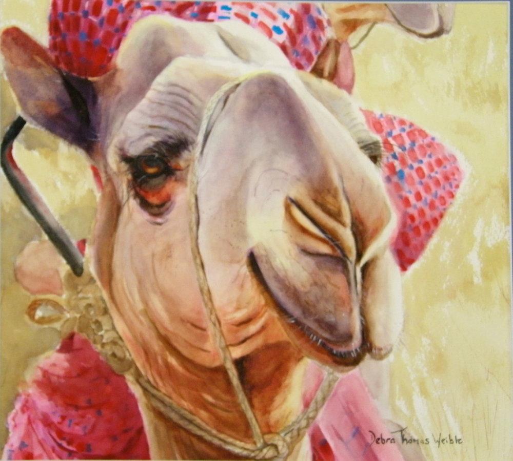 """Camel Ride"""