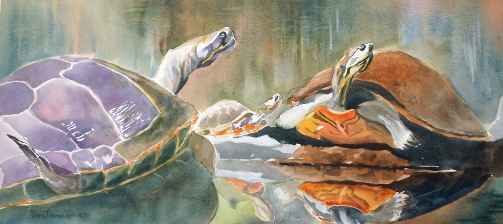 """River Turtles"""