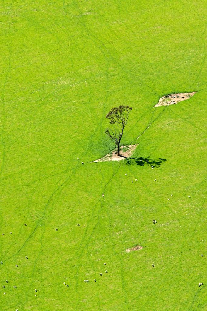 Aerial Photos 007.jpg