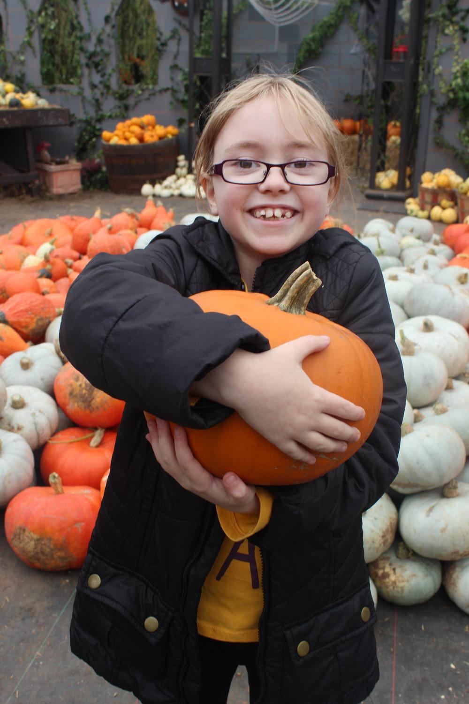 picking the best pumpkin