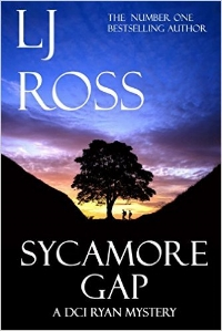 THE EXPLOSIVE SEQUEL TO THE UK #1 BESTSELLER    HOLY ISLAND    The past never stays buried for long...  Detective Chief Inspector Ryan believes he has put his turbulent history behind him. Then, in the early hours of the summer solstice, the skeleton of a young woman is found inside the Roman Wall at Sycamore Gap. She has lain undiscovered for ten years and it is Ryan's job to piece together her past. Enquiry lines cross and merge as Ryan is forced to face his own demons and enter into a deadly game of cat and mouse with a killer who seems unstoppable. Murder and mystery are peppered with a sprinkling of romance and humour in this fast-paced crime whodunnit set amidst the spectacular scenery of Hadrian's Wall country in Northumberland.