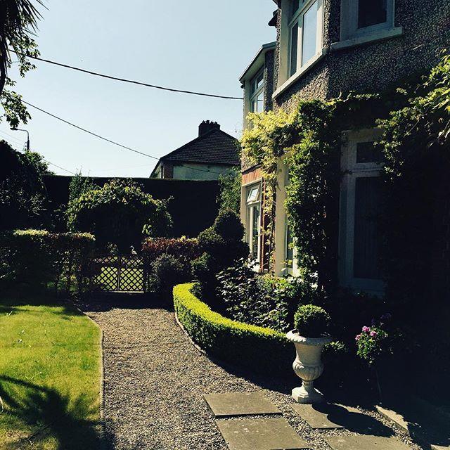 And the garden is looking good too #dublinireland #jacobsfoodguide # thankfulleveryday